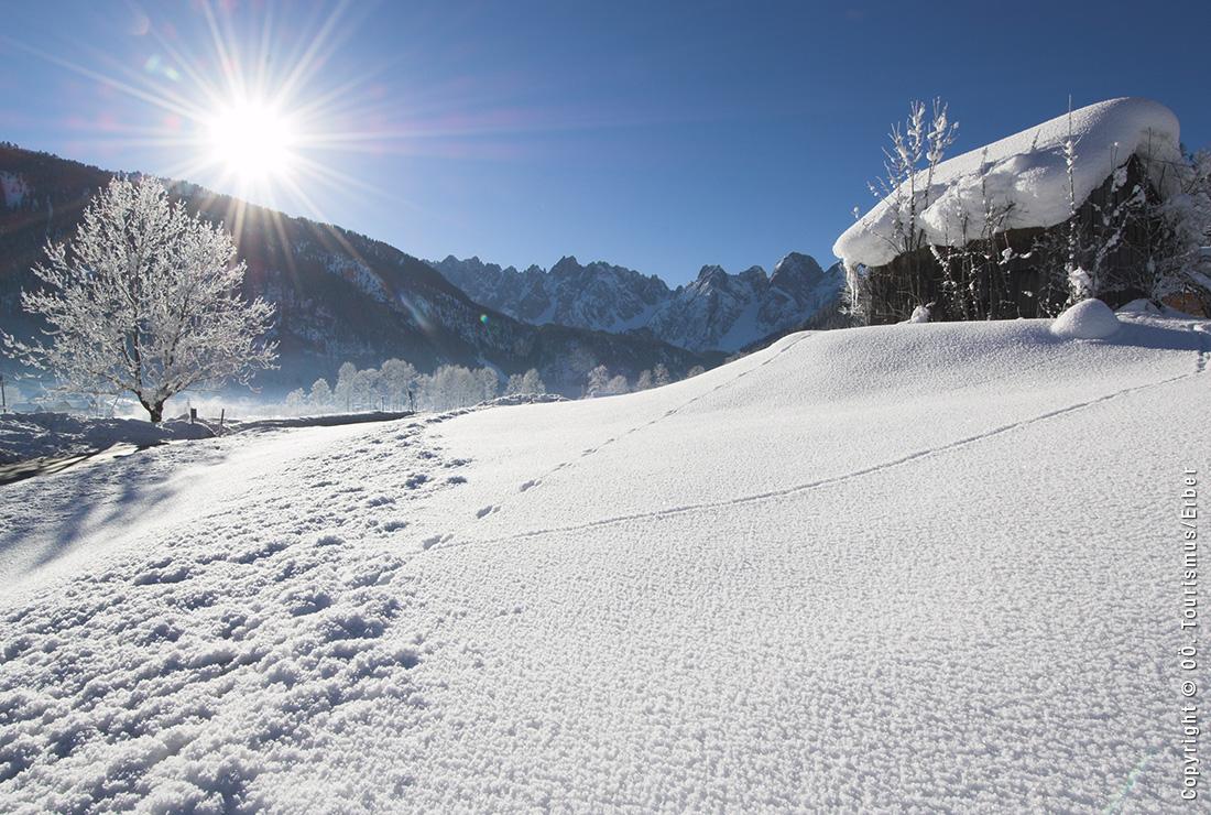 gosau_winter
